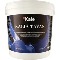 5180 KALIA TAVAN - краска для потолков на водной основе